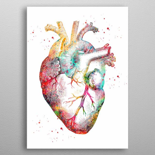 Human Heart, watercolor, medical art, heart,  heart anatomy art, surgery anatomical heart metal poster