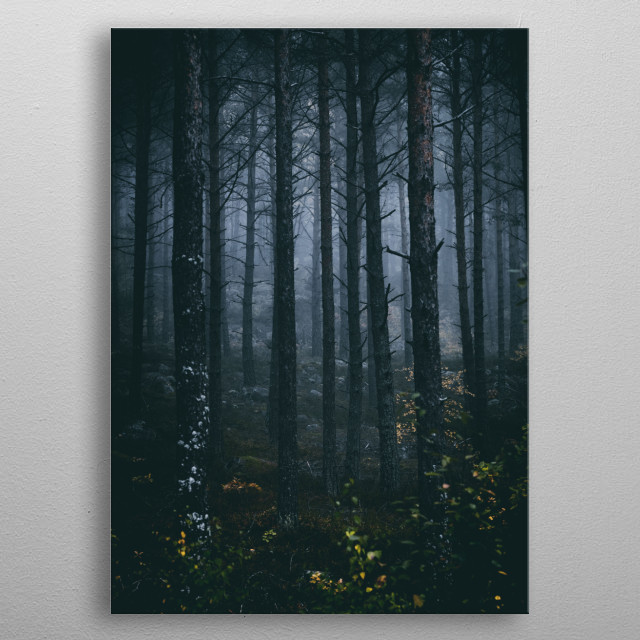 The ones left behind in the dark forest, with no clue where to go. metal poster