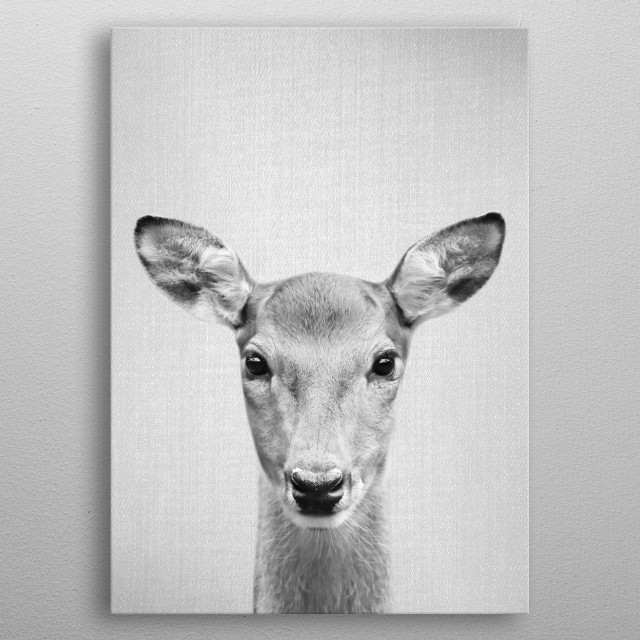 """Doe - Black & White.  For more black & white animals check out the collection in the main page of my shop """"Gal Design"""". metal poster"""