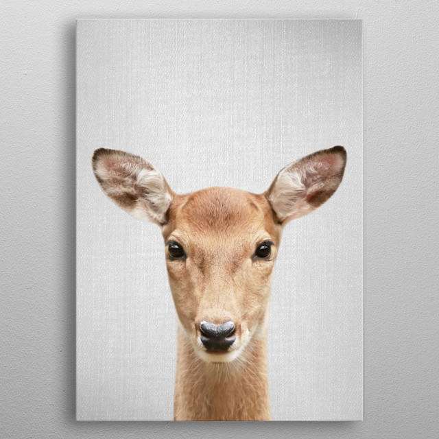 Doe - Colorful.  For more colorful animals check out the collection in the main page of my shop Gal Design. metal poster