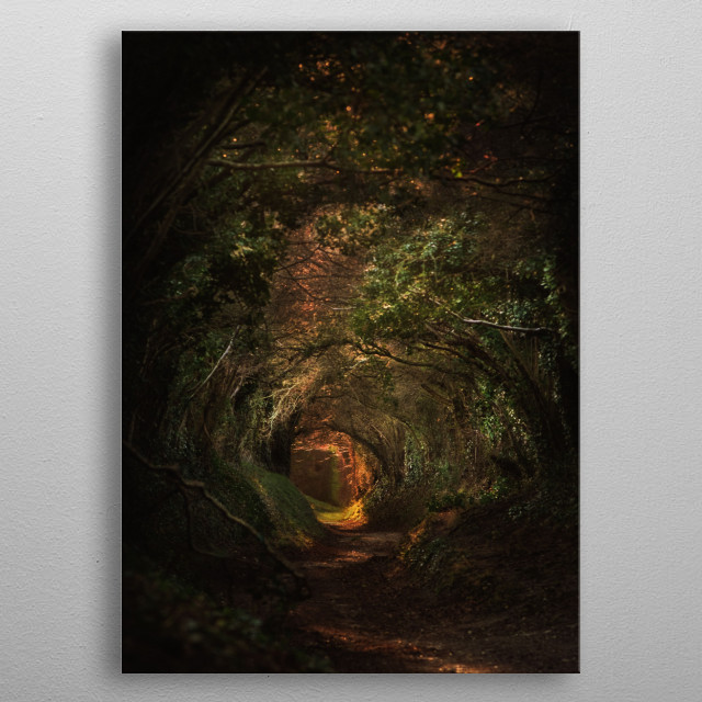 Mystical Path metal poster