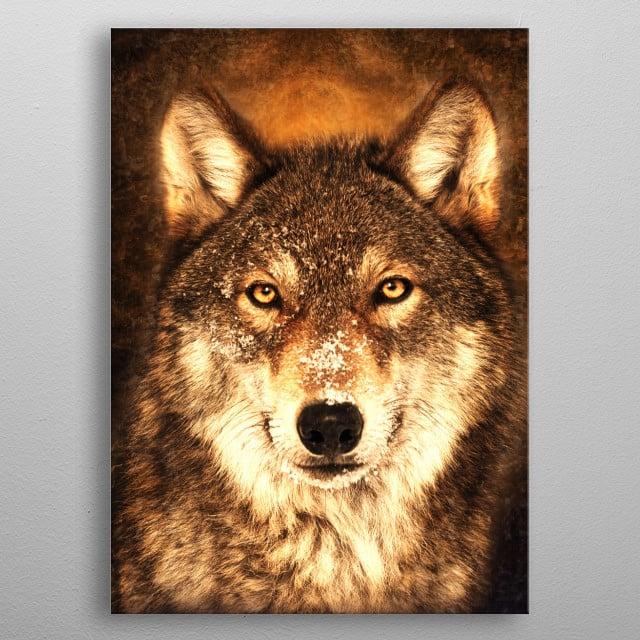 Wolf 7 metal poster