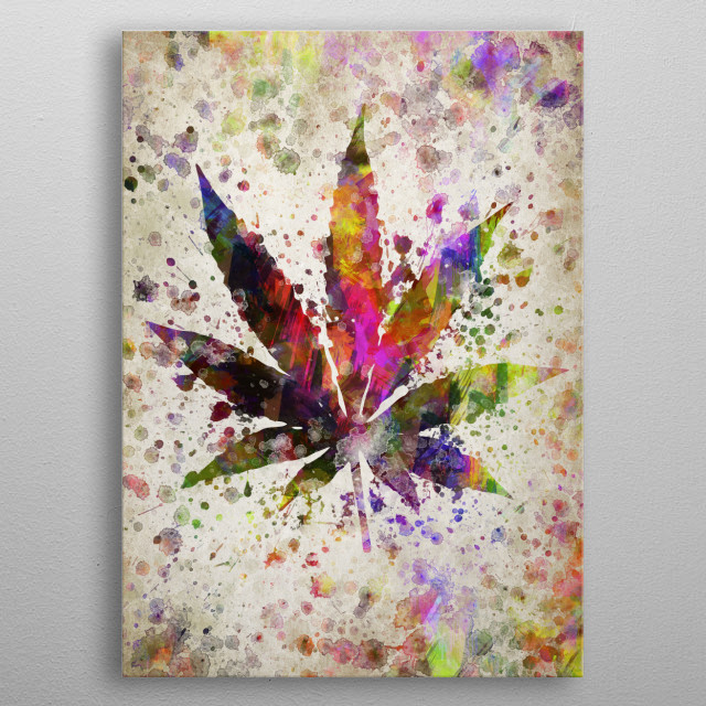 Colorful digital drawing of Marijuana Leaf , a genus of flowering plants that includes three different species, Cannabis sativa, Cannabis in metal poster