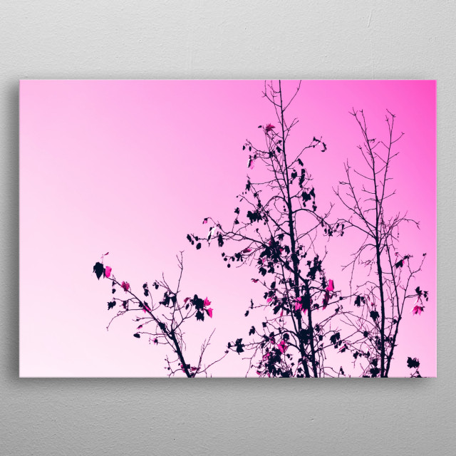 tree branch with pink background metal poster