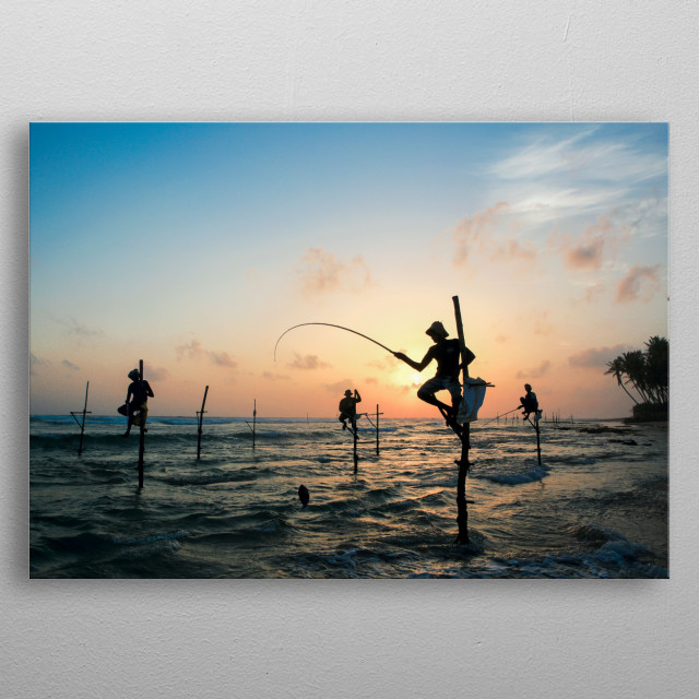 Sunset view of traditional Sri Lankan stilt fishermen  metal poster