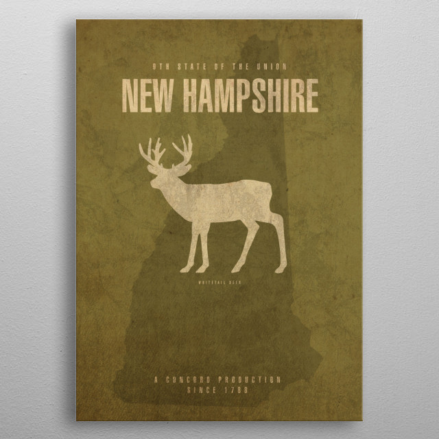 New Hampshire State Facts metal poster