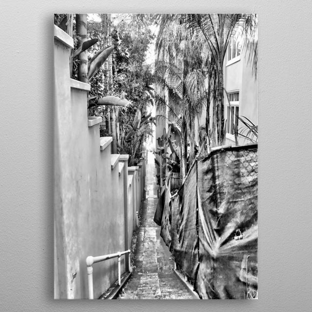 A back alley lined with palm trees leading towards the beach. metal poster