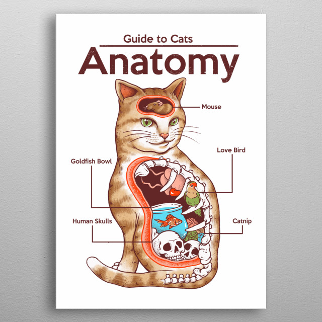 See why cats are weird in this guide to their anatomy. metal poster
