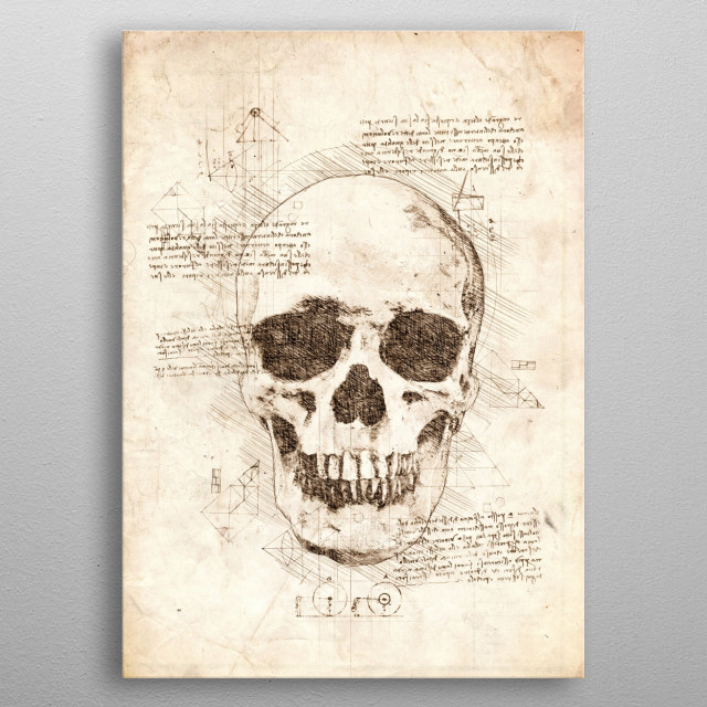 Sketch of a Human Skull metal poster