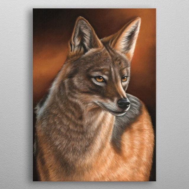 Portrait of a jackal. This artwork was created using soft pastels. An great gift for any lover of wildlife. metal poster