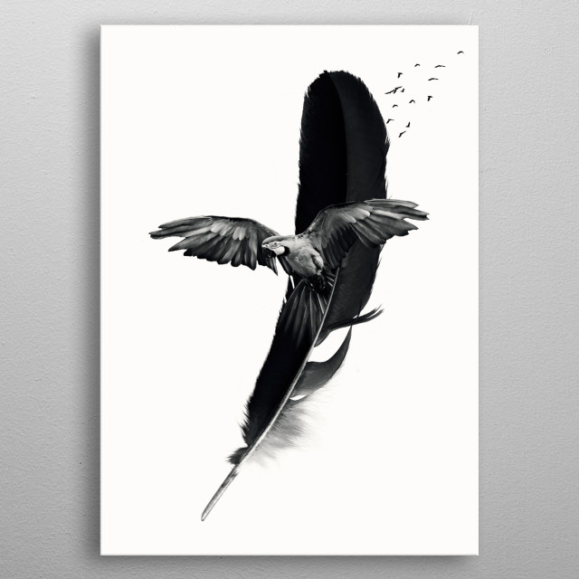 Parrot Feather Wallpaper Animals Poster Print Metal