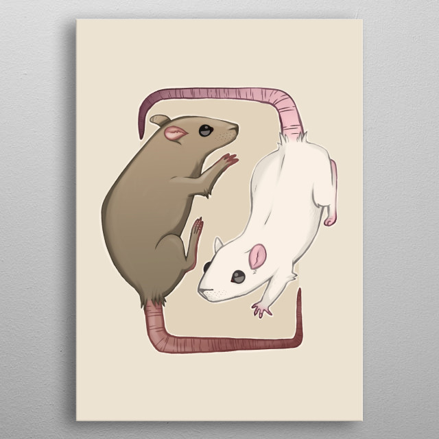 Illustration of two rats. metal poster