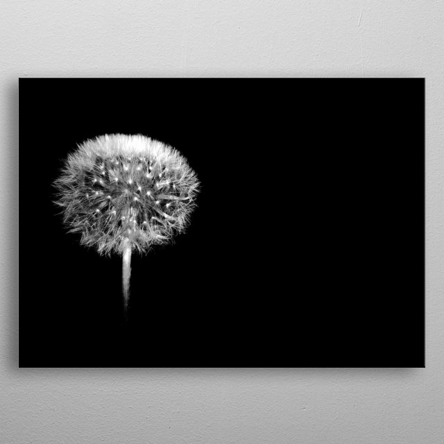 minimalistic picture for wall decoration or ather things metal poster