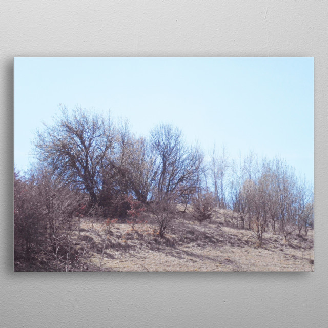 Natural landscape photography of the vegetation on the hills on temperate climate. metal poster
