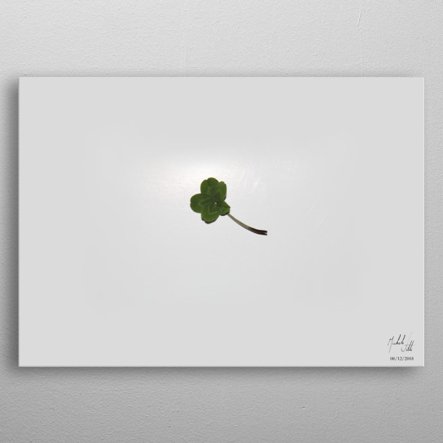 Photography depicting a fiveleaf clover. Author: Michele Vitti metal poster