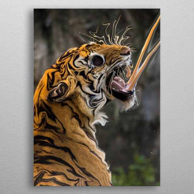 The tiger is one of the strongest animals and the strongest in it is its fangs and the power of vision in the eye. metal poster