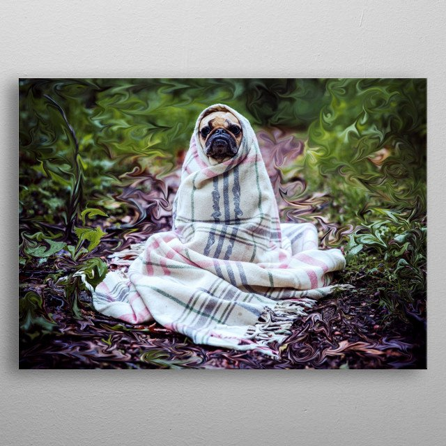 In this cold atmosphere the dog is cold and covers itself. metal poster