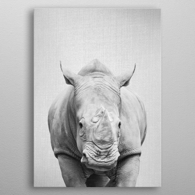 "Rhino - Black & White.  For more black & white animals check out the collection in the main page of my shop ""Gal Design"". metal poster"