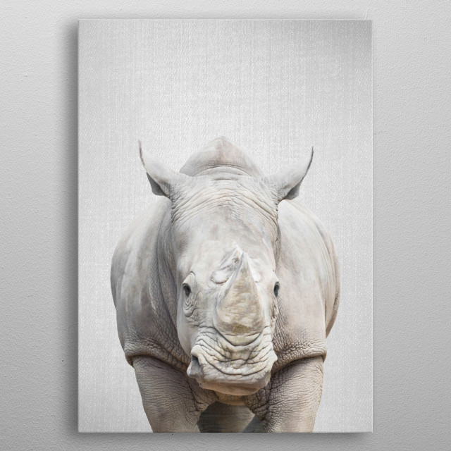 "Rhino - Colorful.  For more colorful animals check out the collection in the main page of my shop ""Gal Design"". metal poster"