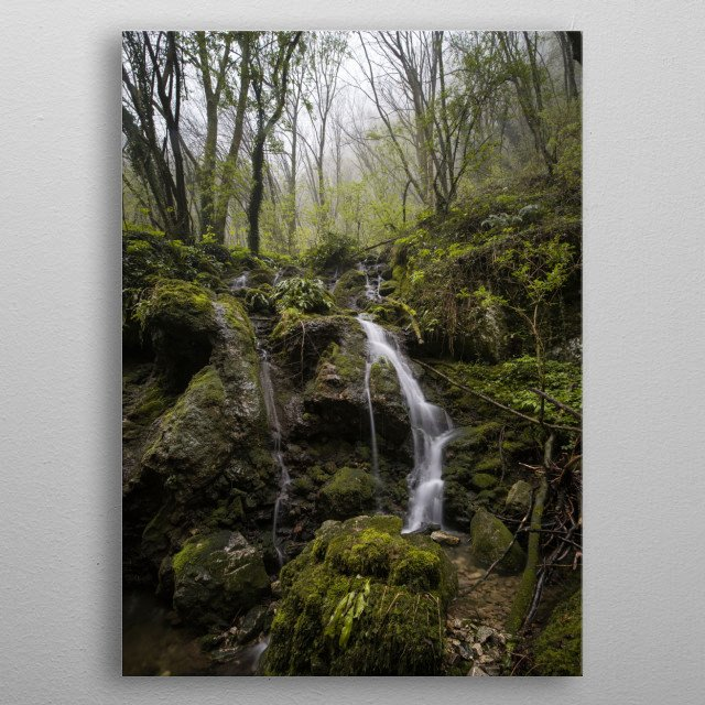A river flows into a green forest during a rainy day. the underwood is full of musk and the green dominates the picture. metal poster