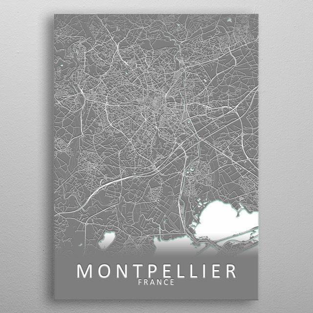 Montpellier France City Map metal poster