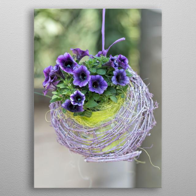 hanging bellflower for home decor metal poster