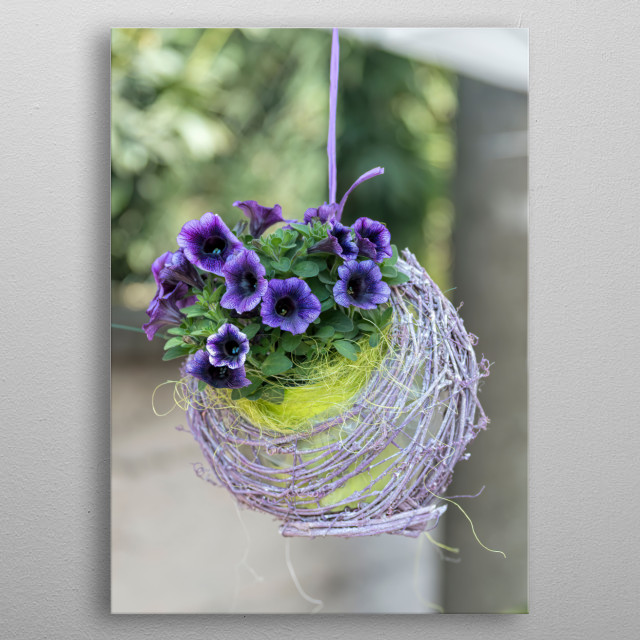 hanging bellflower for home decor metal poster