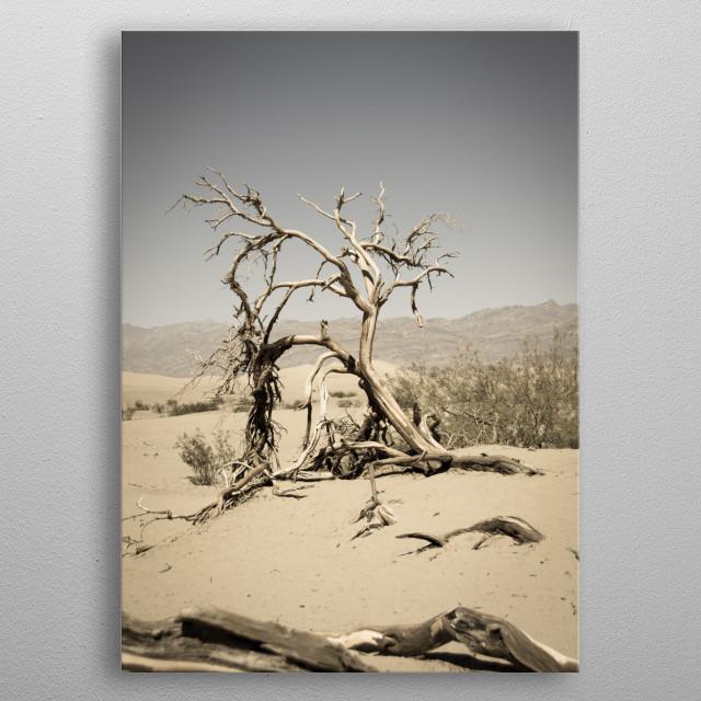 Dead tree in Death Valley metal poster