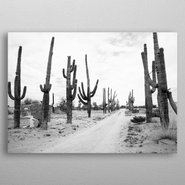Rural Arizona near Florence, Arizona  metal poster
