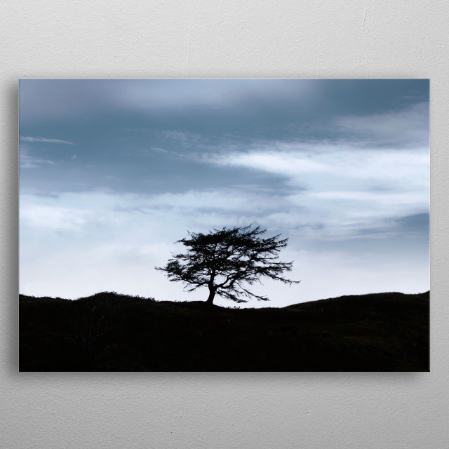 a lone tree on a Lake district hill top in the UK, capturing a beautiful imposing sky with a solitary tree silhouetted against it. metal poster