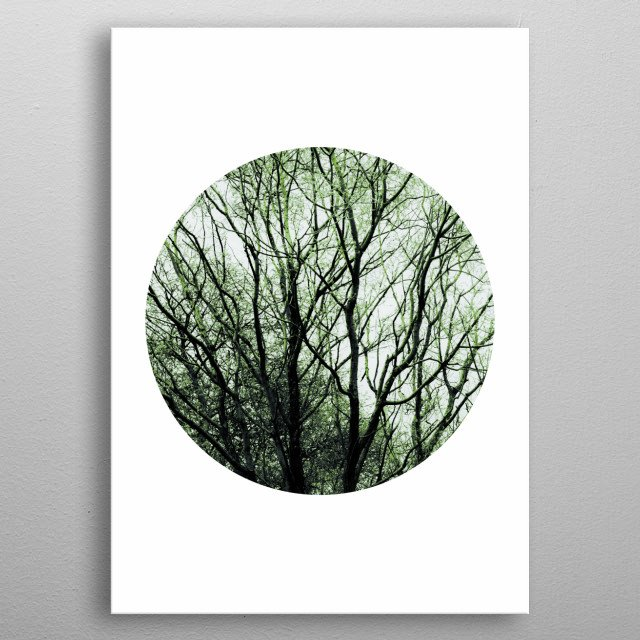 A geometrical composition of tree branches in a circles. metal poster