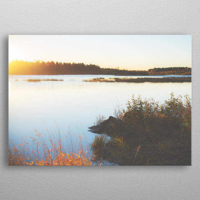 The peaceful morning view on the river from country side of Finland at autumn time. Water stays still. Birds are heading to south for winter metal poster