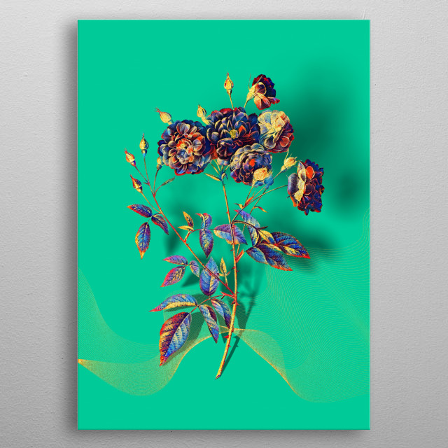 Gilded Multicolor Vintage Botanical Illustration on Various Jewel Tone Backgrounds  metal poster