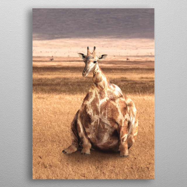 Pick up this cute funny fat giraffe design. This makes a perfect gift so pick one up today.  metal poster