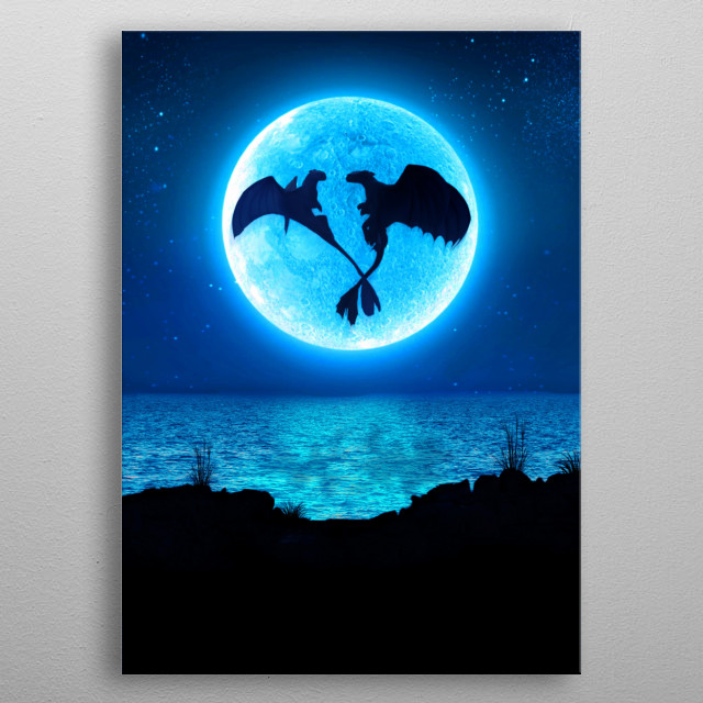 How to train your dragons inspired artwork metal poster