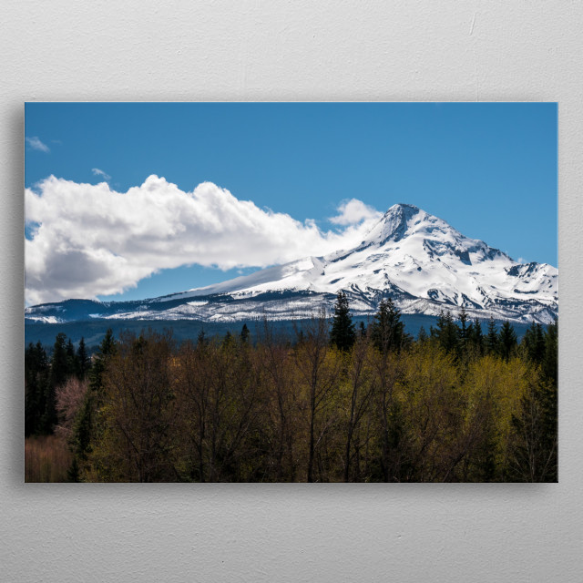 High-quality metal print from amazing Out West collection will bring unique style to your space and will show off your personality. metal poster
