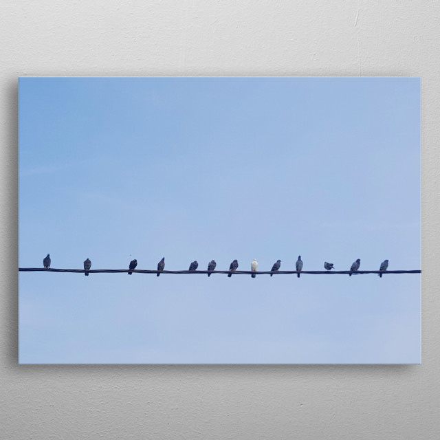 A line of birds on a cable. All of them are black exept one white bird. Behind them there's clean blue sky. Be extraordinary, it's beautiful metal poster
