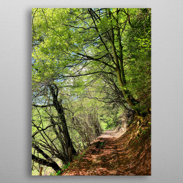 In the heart of a mountain forest, a path that must be followed to discover this enchanting place with its beautiful spring colors. metal poster