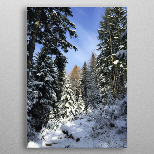 In the heart of the mountains, in a still wild place, the beauty of a snowy forest is always magical. metal poster