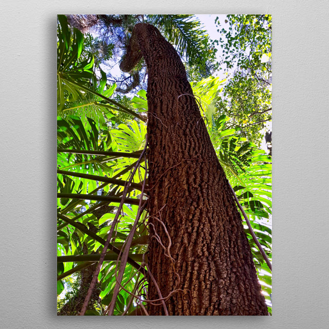 It's good to see the view from here. That's pretty amazing Monstera and Tree Trunk. metal poster