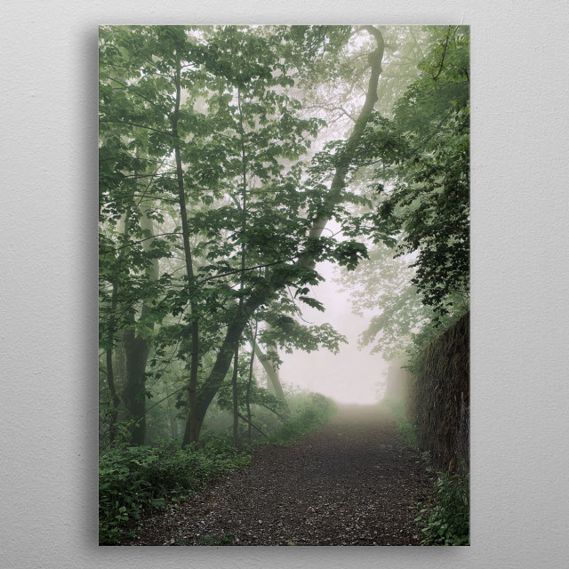 Morning walk in the mountains, on a path towards the forest, during a beautiful misty morning. metal poster