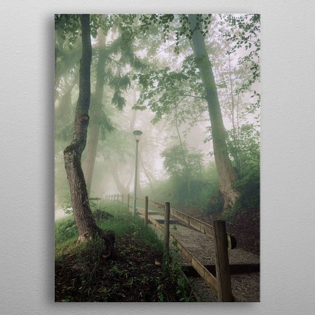A walk in the mountains, following a path towards the forest, on a beautiful misty morning. metal poster