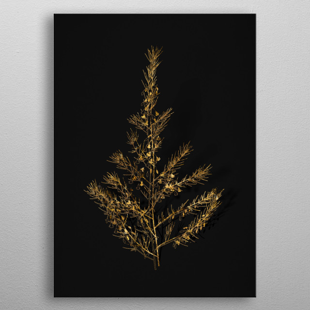 Botanical drawing in GOLD!!! Digitally rendered, gilded and outlined in sparkly glitter on black. Metallic illustration.  metal poster
