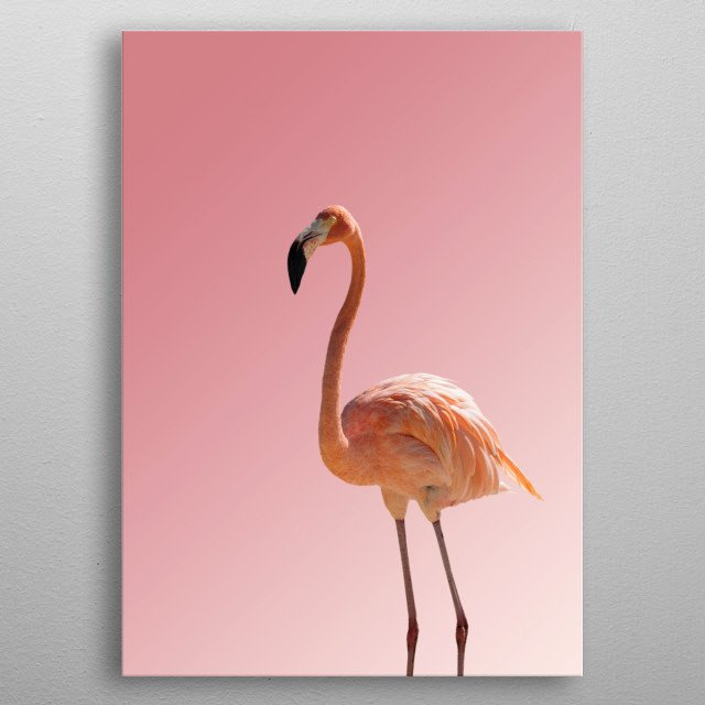 Flamico Collection | Image by Chantelle Flores  metal poster