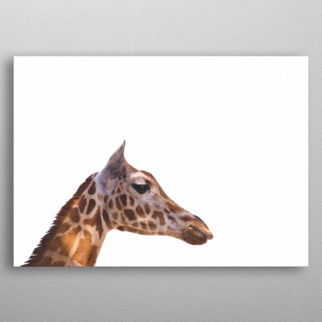 Minimalist Giraffe, Kruger National Park   South Africa  metal poster
