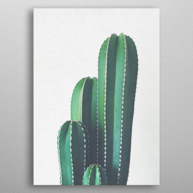 A still life photograph ofa striking Organ Pipe Cactus plant. metal poster