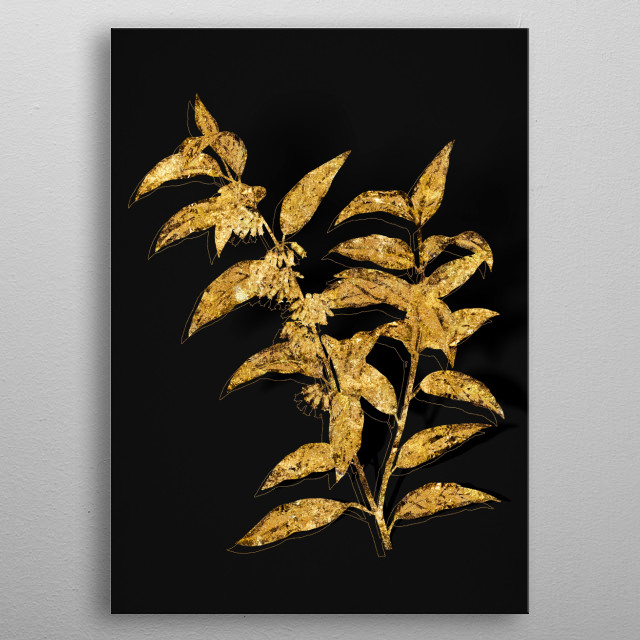 Botanical drawing in GOLD!!! Digitally rendered, gilded and outlined in sparkly glitter on black. Part of Expanded Collection. metal poster