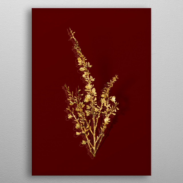 Botanical drawing in GOLD!!! Digitally rendered, gilded and outlined in sparkly glitter. Set on a rich red background.  metal poster