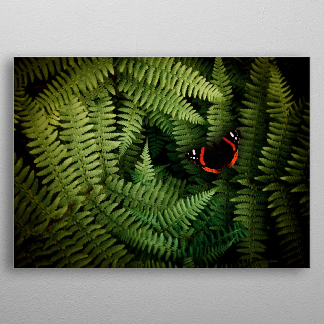 Butterfly resting on the fern metal poster