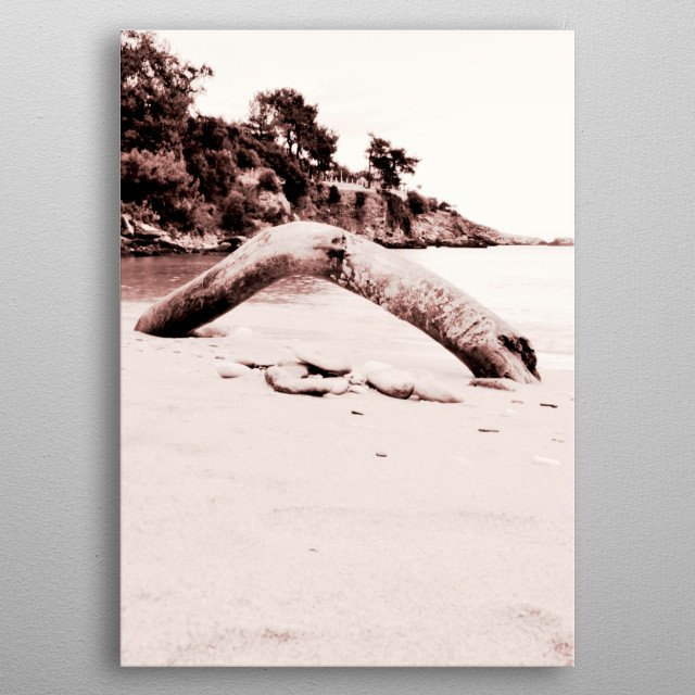 Monochrome capture of a dried tree trunk on a beautiful beach. metal poster